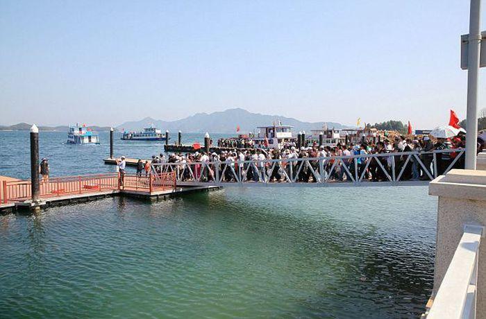 Bridge Collapses in China