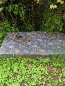 Sex Mattress In The Middle Of The Woods