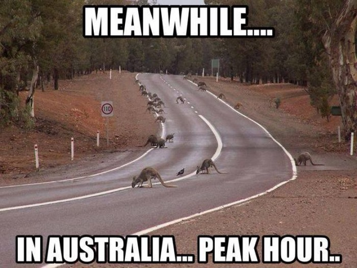 Meanwhile in Australia, part 2