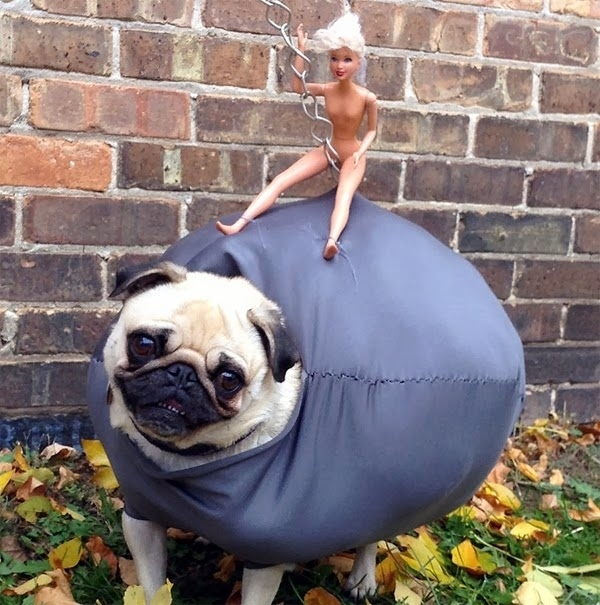 This Halloween Costume is Awesome