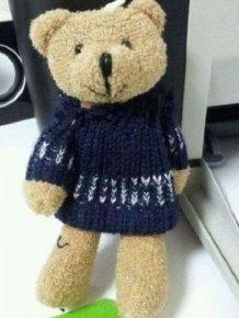 Just a Normal Teddy Bear?