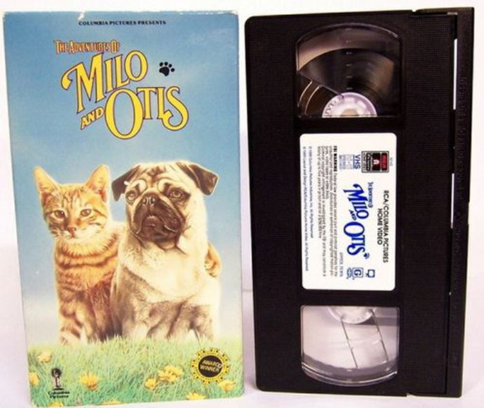 VHS Tapes from the Past