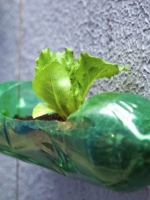 Interesting Way to Recycle PET Bottles