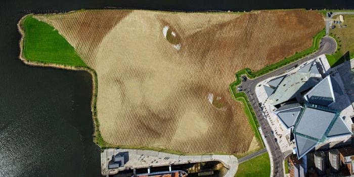 Giant Land Art Portrait