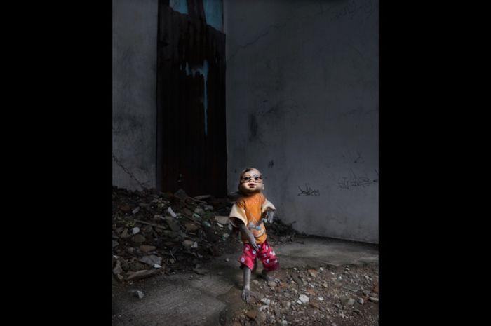 Masked Monkeys of Jakarta