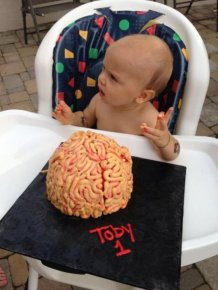 Brains for Toby