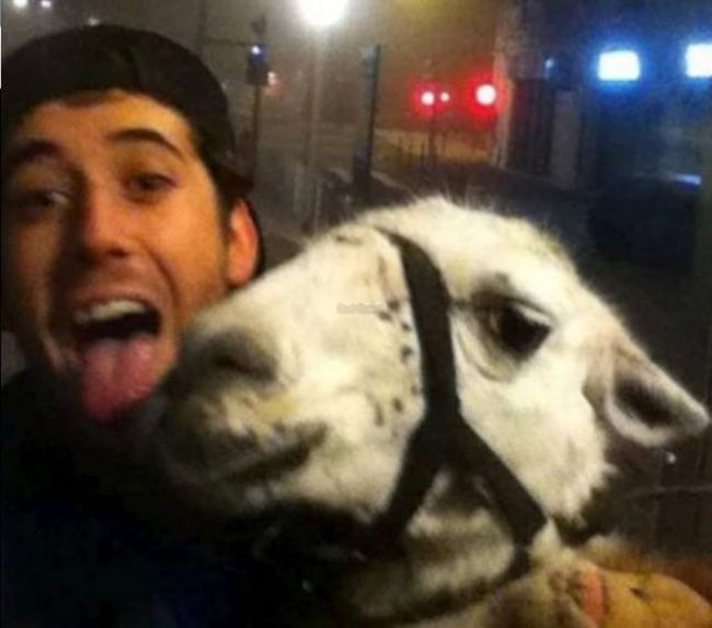 French Teens Partying with a Llama