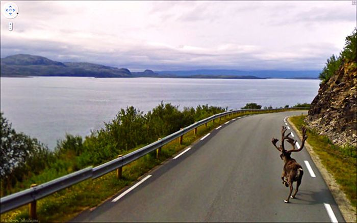 Beautiful Google Street View Photos