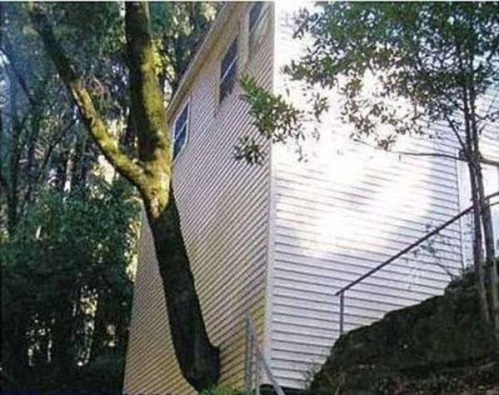 Very Bad Architect Jobs