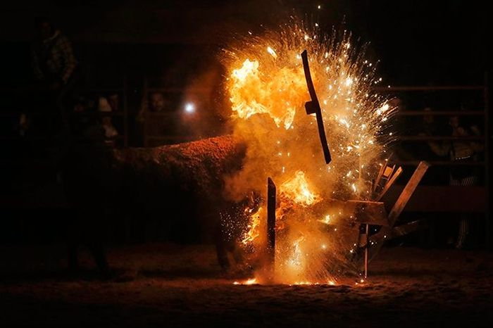 """""""Fire Bull"""" Festival"""
