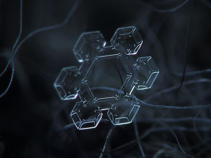 Close-Up Photos of Snowflakes