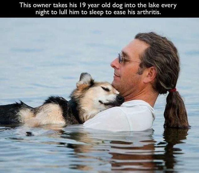 Good Pet Owners