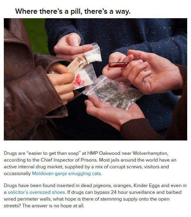 War on Drugs is Useless?