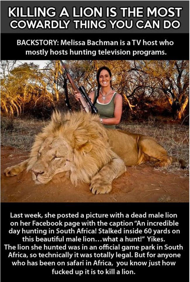 There's No Sport in Killing Lions