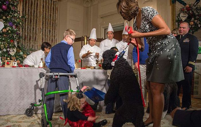 Obama's Dog Sunny Knocked Over a Little Girl