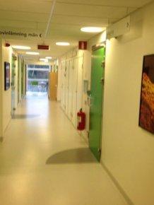 Giving a Sperm Sample in Sweden