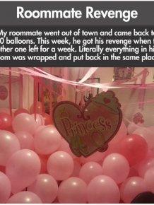 Roommate Revenge