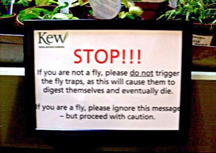 WTF Signs, part 41