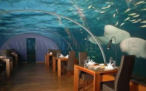 The most unusual restaurants in the world