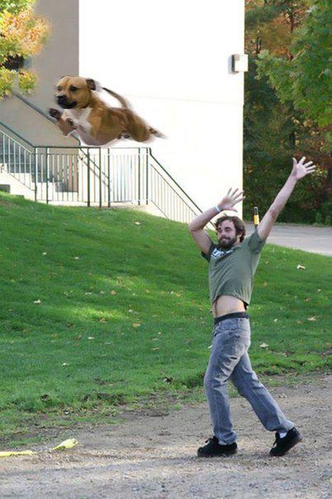 Photoshopping Things