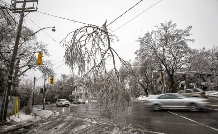 Ice Storm in Canada