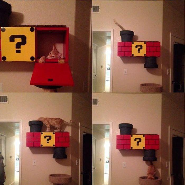 Super Mario Cat Shelf