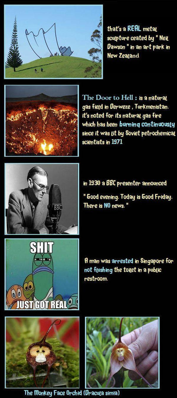 Unbelievable but True Facts