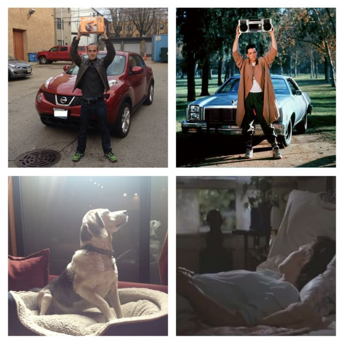 Reenacting Famous Movie Scenes With a Dog