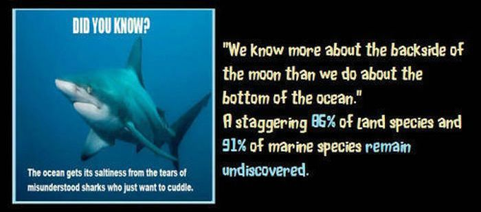 Unbelievable but True Facts, part 2