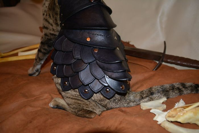 Cat Battle Armor