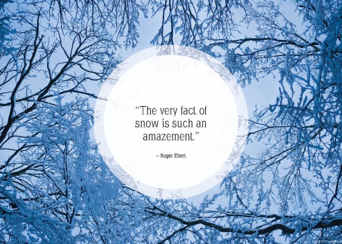 Good Inspirational Quotes About Snow Storms Best Quote 2017