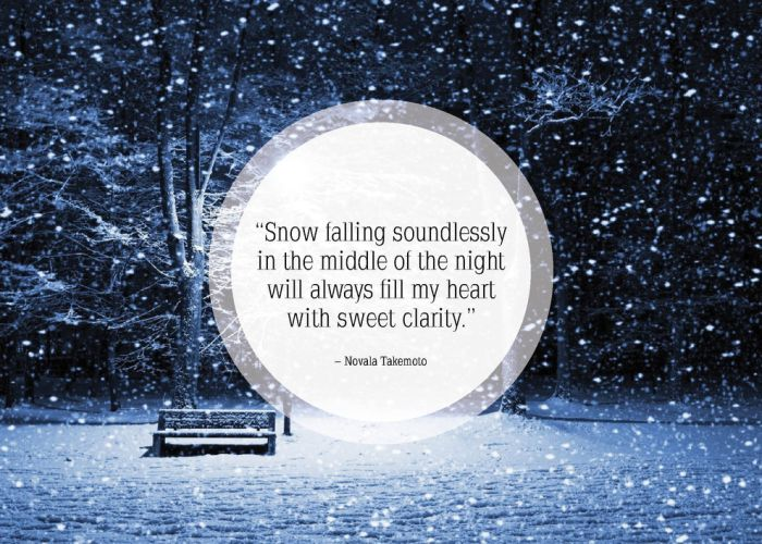 great quotes about snow others