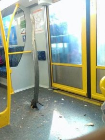 Accident in Australian Subway