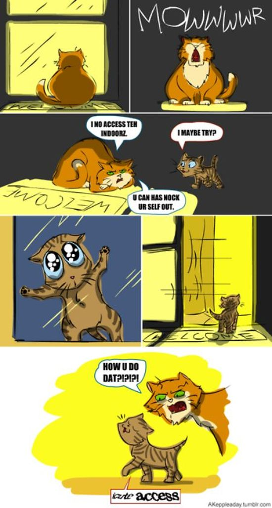 Funny Captchas