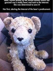 Lost Stuffed Animal