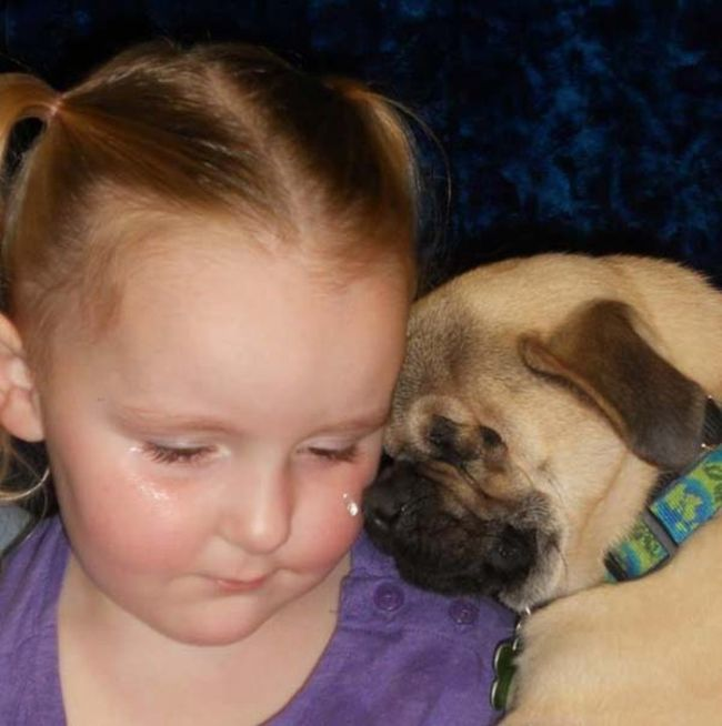 Blind Pug Xander