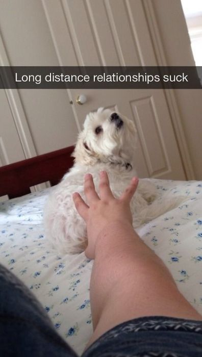 Funny Snapchat Photos
