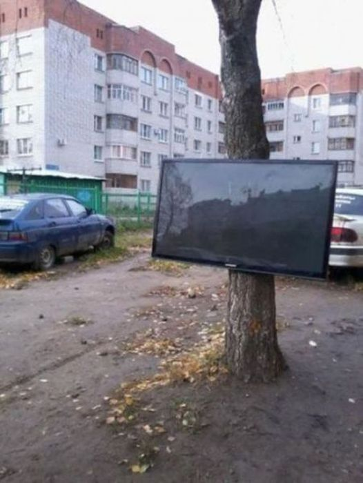 WTF Pictures, part 18