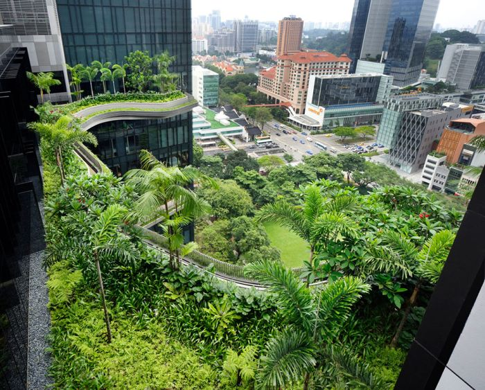 The Coolest Sky Gardens
