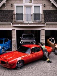Garage basketball player Nate Robinson