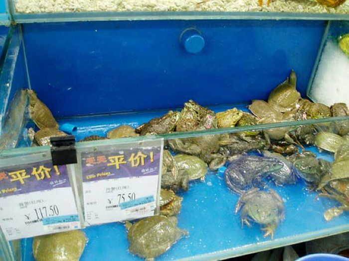 Only at Wal-Mart in China