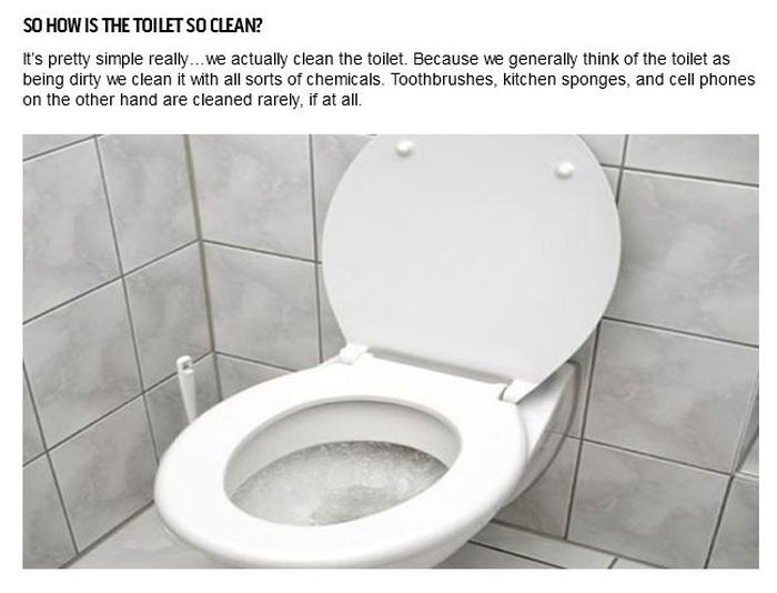 Things That Are Dirtier Than Your Toilet