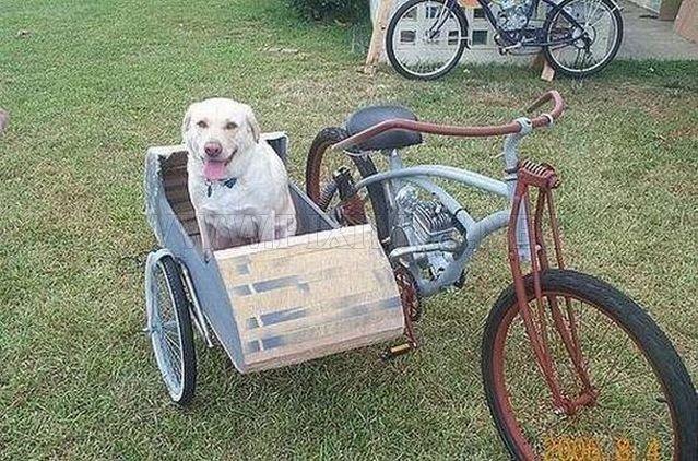 Side Carts