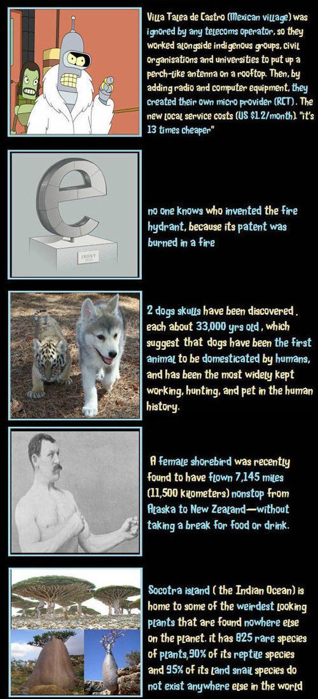 Unbelievable but True Facts, part 4