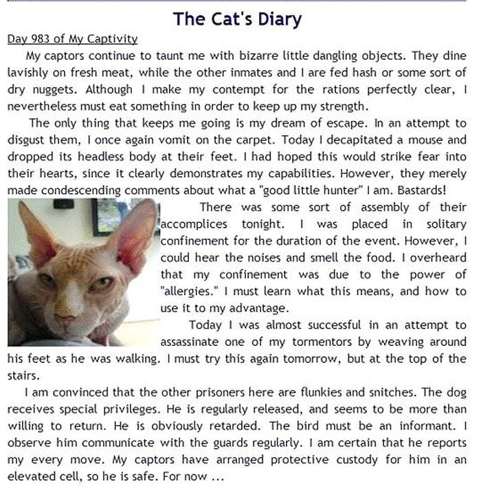 Your Pets' Diaries