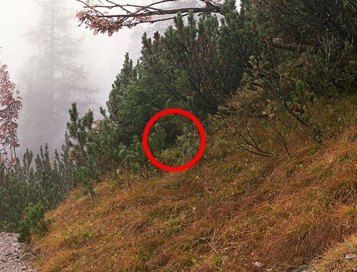 Find the Snipers