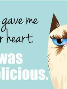 valentines day cards of the grumpy cat others