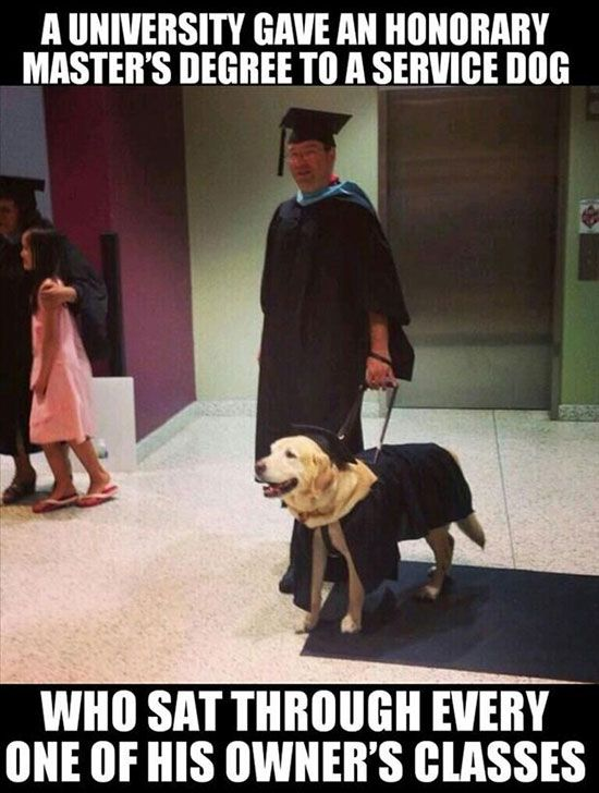 Faith in Humanity Restored, part 11