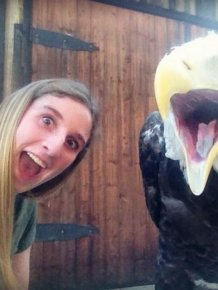 Girl vs Eagle