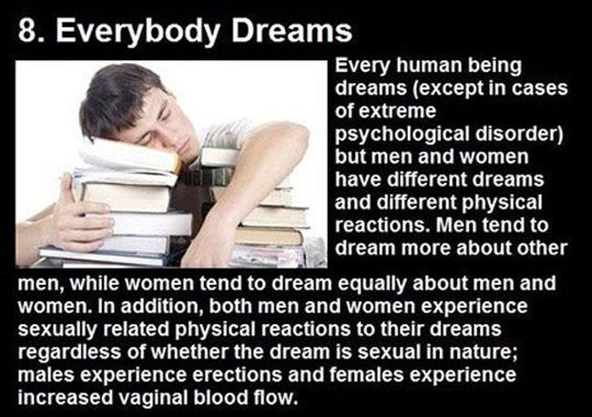 Dream Facts